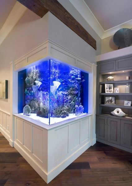 Living room aquarium, living room sofa living room decor, living room ideas