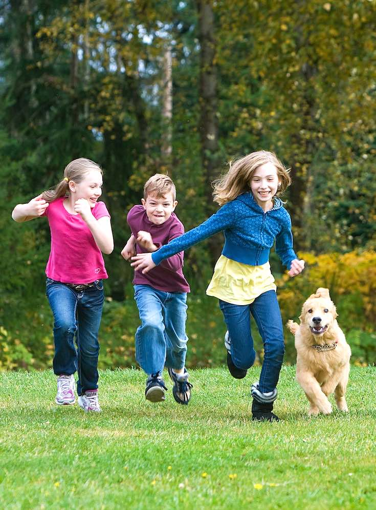 Benefits of exercise, fitness exercise with dog, exercise tips with dog, families exercise with dog, running exercise with dog, kids exercise with dog, fun exercise with dog