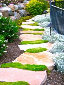Flagstone walkway in backyard