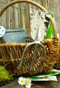 Garden tools in basket