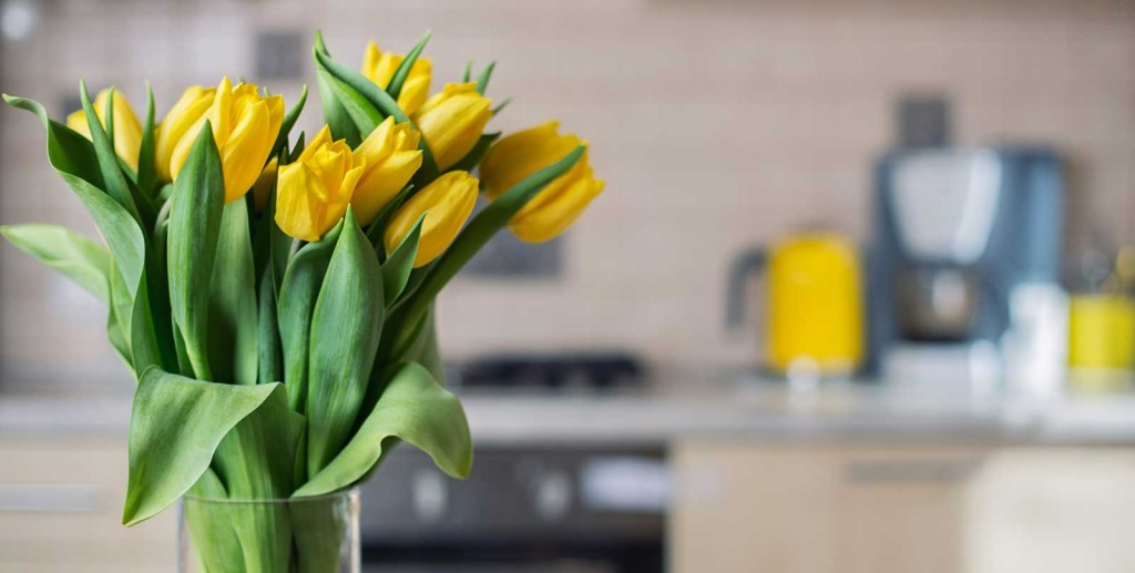 Yellow flowers in kitchen