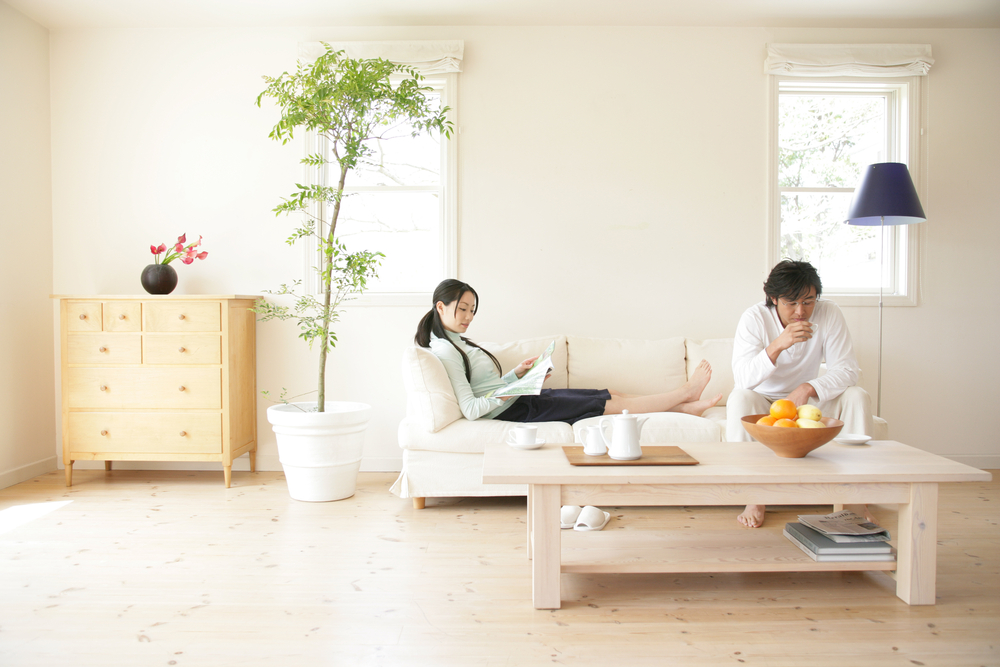Achieve Asian décor with plants and light in asian inspired living room