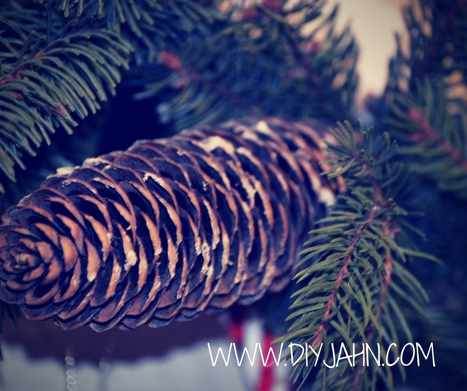 Pine cones for DIY Christmas wreath