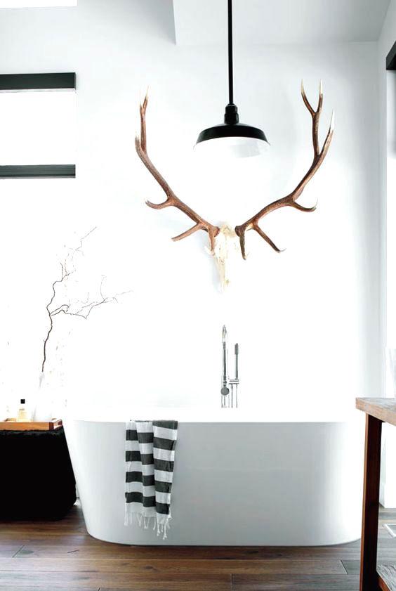 Deer antlers decor